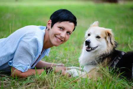 MoneyCheck | Hundehalterhaftpflichtversicherung