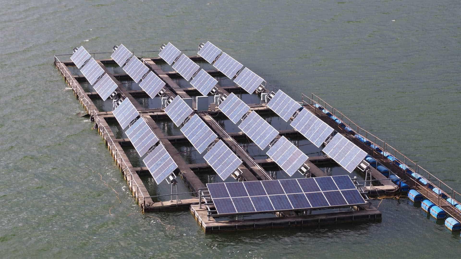 Solarmodule in Asien – Wo geht es hin mit der Solar-Energie?