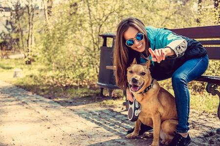 MoneyCheck | Hundehaftpflicht & Hundeversicherung Pitbull