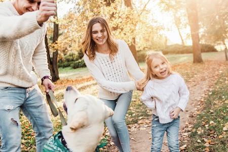 MoneyCheck | Gothaer Hundehaftpflicht & Hundeversicherung
