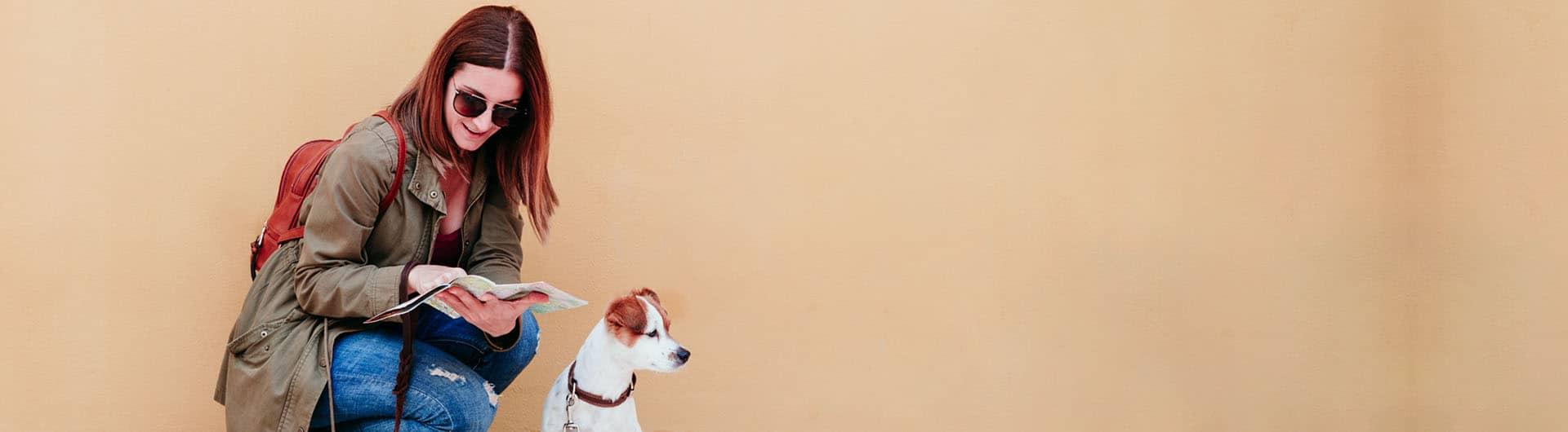 HanseMerkur Hundehaftpflicht & Hundeversicherung
